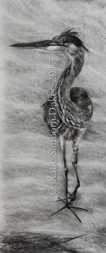 """Balance Pose-Heron"" Original Charcoal Drawing-SOLD"