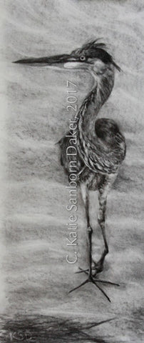 """Balance Pose-Heron"" Original Charcoal Drawing by Katie Sanborn Daker-SOLD"