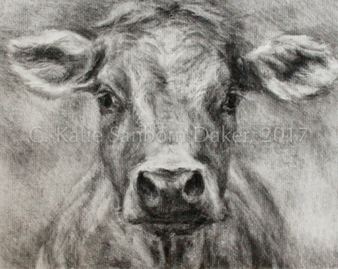 """Funky Cow"" Original Charcoal Drawing"