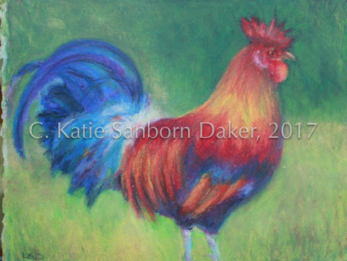"SOLD-""Fire Rooster"" Original Oil Pastel by Katie Sanborn Daker"