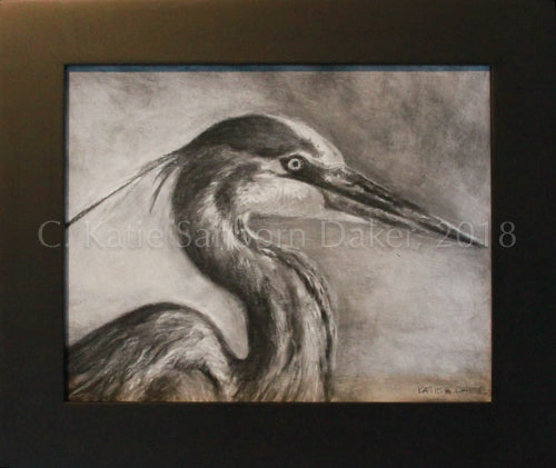 "SOLD-""Focus"" Original Charcoal Drawing on Canvas-10""x 8"""