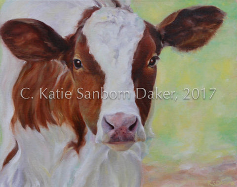 """Baby Cow"" Oil Painting by Katie Sanborn Daker-SOLD"
