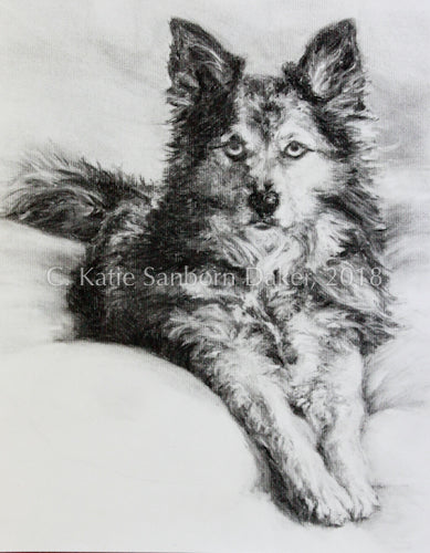 """Wylie Girl"" Original Charcoal Drawing by Katie Sanborn Daker-Private Collection"