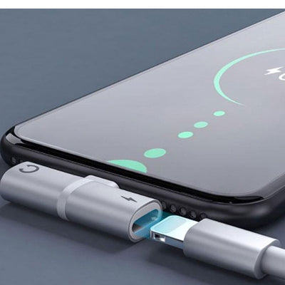 iPhone Lightning Charging port Adapter