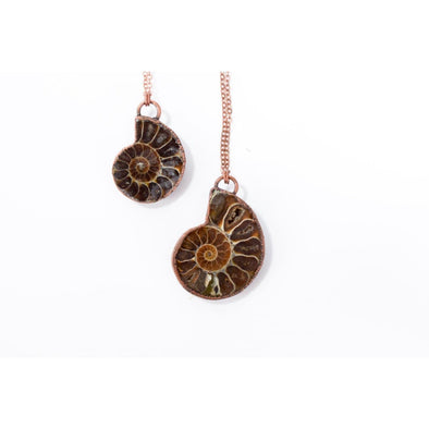 Ammonite fossil necklace | Fossil men's jewelry | Raw organic fossil necklace | Ammonite fossil pendant | Fossilized Ammonite pendant