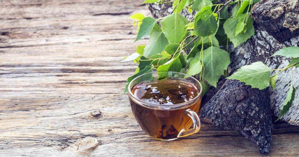 THE AMAZING HEALTH BENEFITS OF CHAGA MUSHROOM (PLUS a FREE smoothie recipe!)