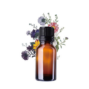 How to use essential oils in everyday living