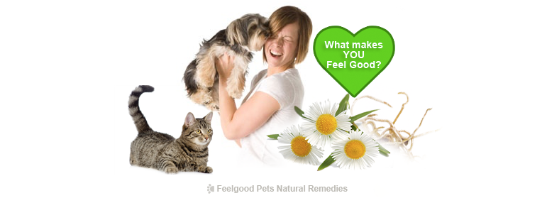 Intestinal Health & Worms: How to keep YOUR dog and cat naturally worm-free!