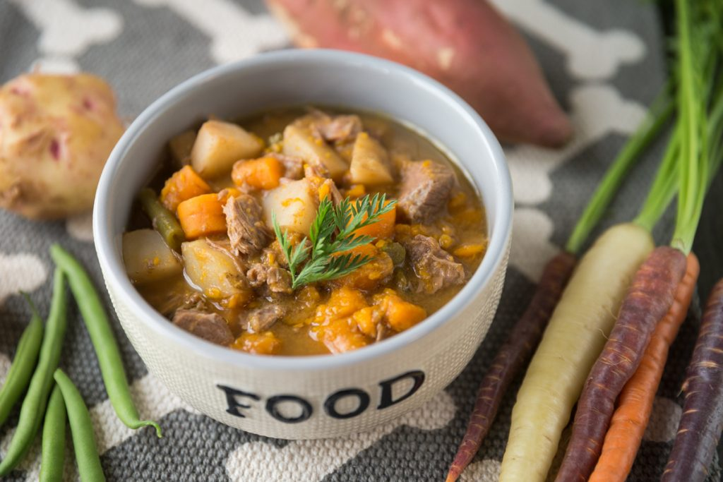 healthy beef stew recipe for dogs