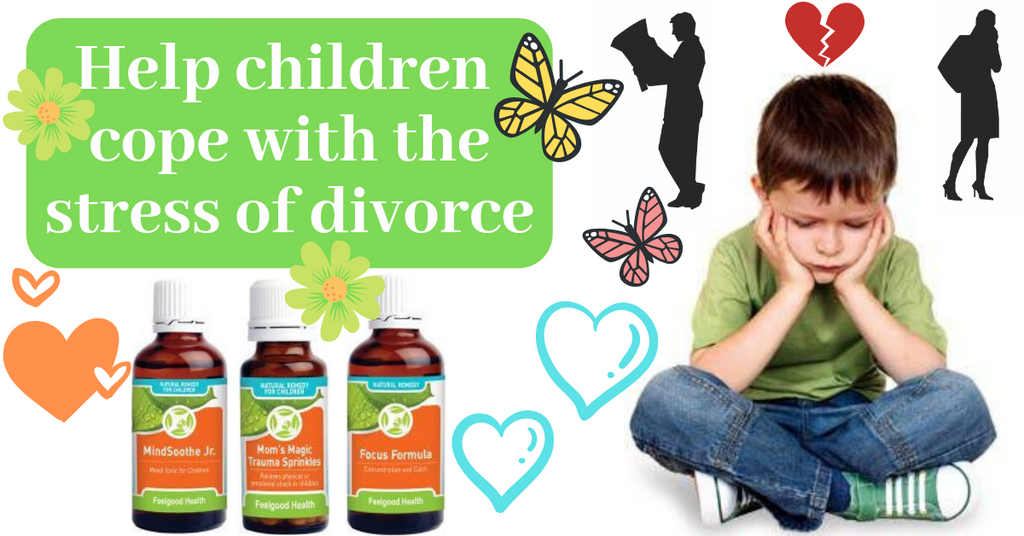 Help child deal with stress of divorce