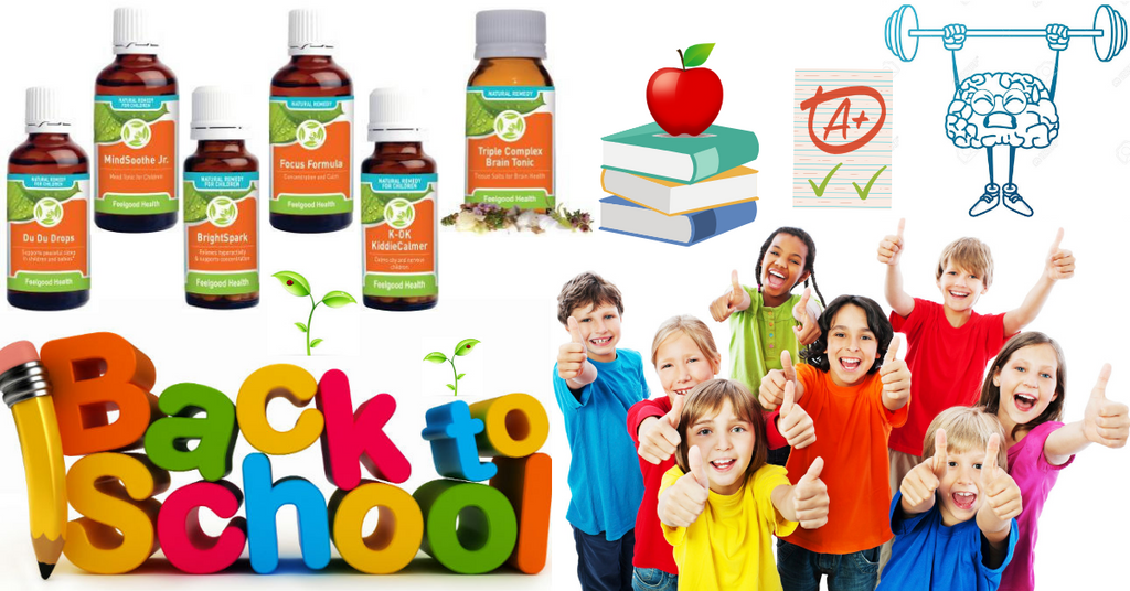 back to school healthy motivated children kids students