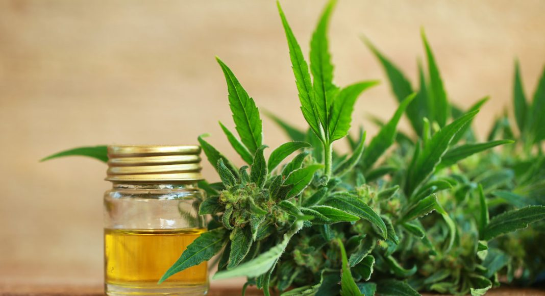 what is organic cbd oil science
