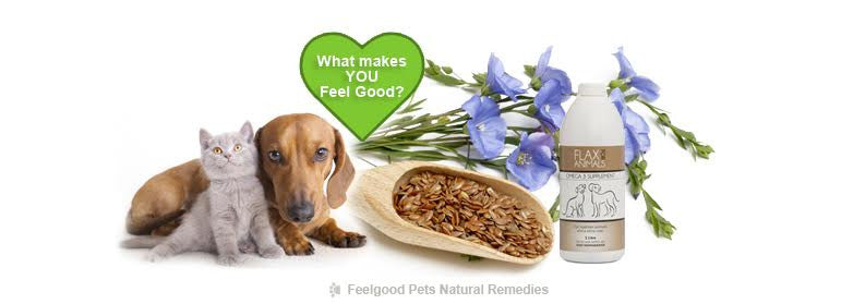 Health benefits of Flaxseed oil for pets!