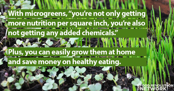 health benefits microgreens