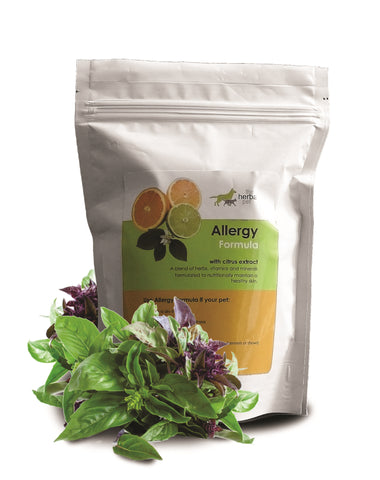 allergy itchy skin pets supplement