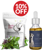 pet arthritis natural holistic remedies cbd