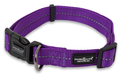 Buy Dog Collars Online Feelgood Pets South Africa