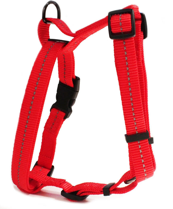 Buy dog leashes Harnesses online Feelgood Pets South Africa