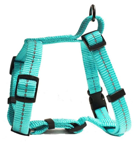 Buy dog harnesses leashes online Feelgood Pets South Africa