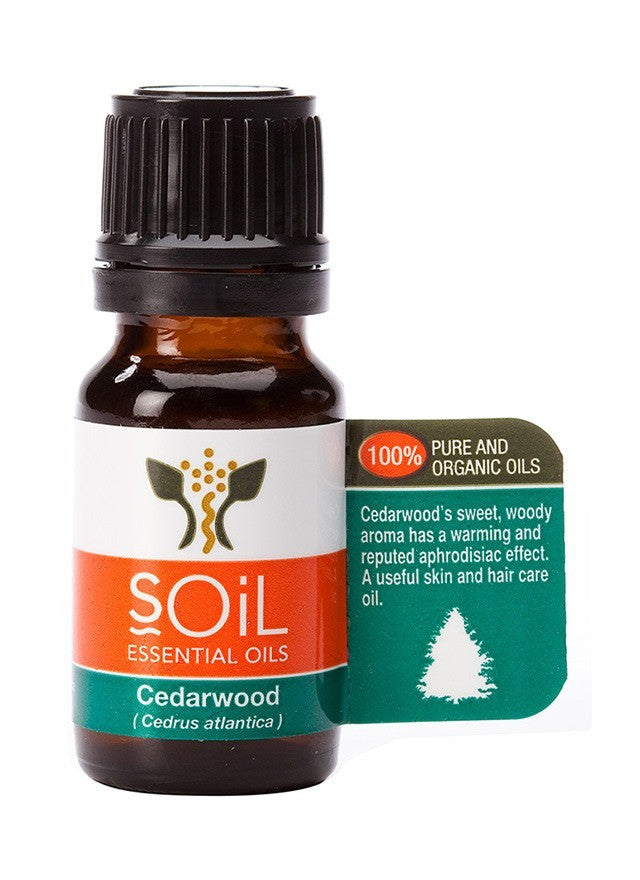 Cedarwood Oil: 100% Pure Organic Essential Oil from Soil