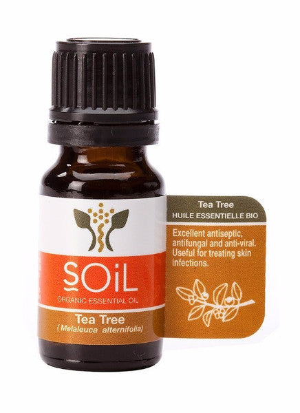 Tea Tree Oil:  100% Pure Organic Essential Oil from Soil