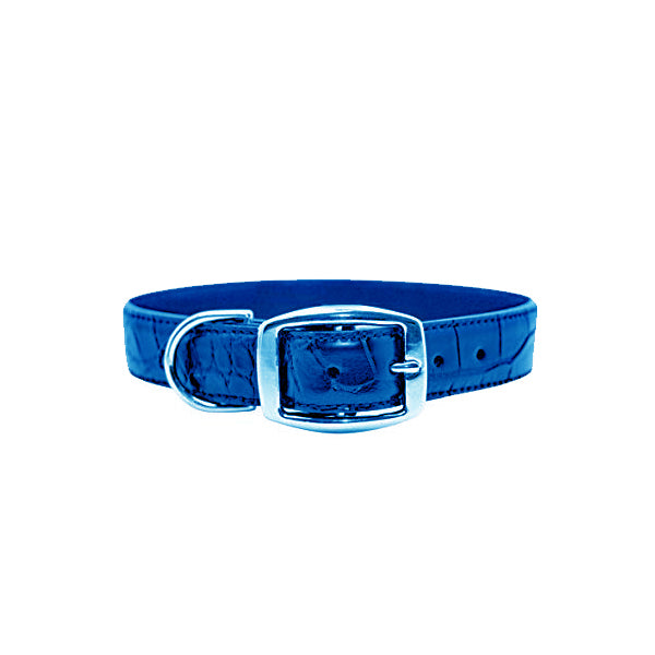 piper & skye luxury leather dog collar in cobalt