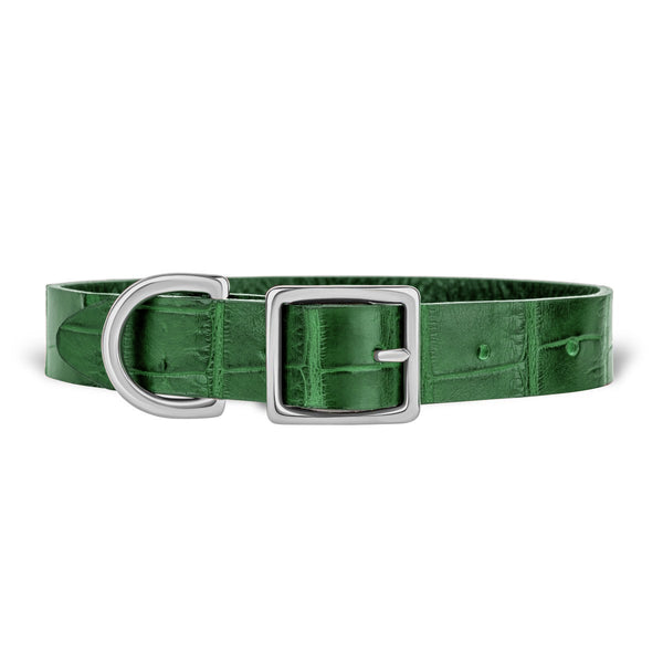 York Dog Collar - Forest Green Alligator - PRE-ORDER
