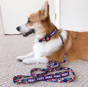 Pawz Abstract XS Dog Collar & Leash - Pawz