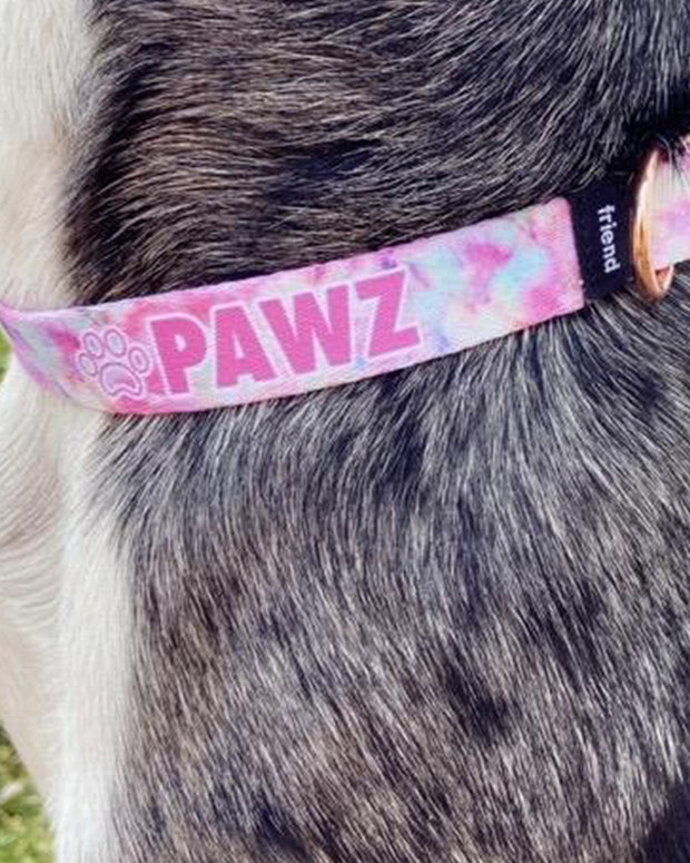 Pawz Matching Tie Dye Dog Collar + Lanyard Set - Pawz