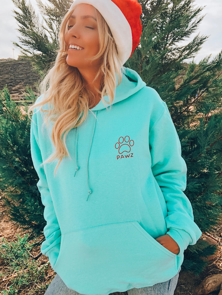 Cool Mint Holiday Hoodie - Pawz