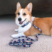 Pawz Retro Dog Collar and Leash Set - Pawz