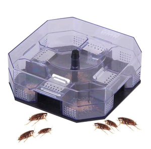 Reusable Cockroach Trap Semi-Clear Top
