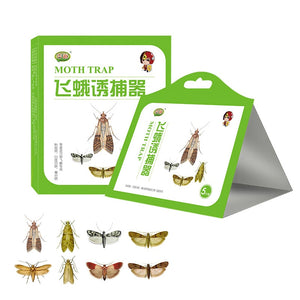 Moth Glue Traps - 5 pcs