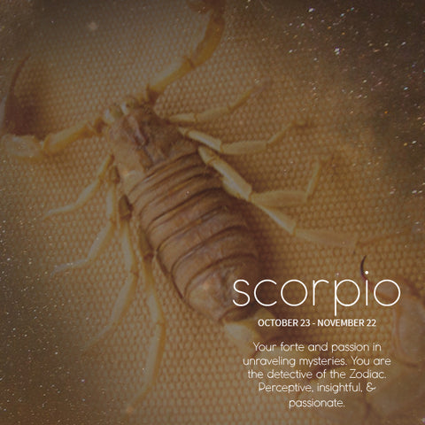 SEAH® Designs Scorpio Monthly Horoscope Birthday Reading