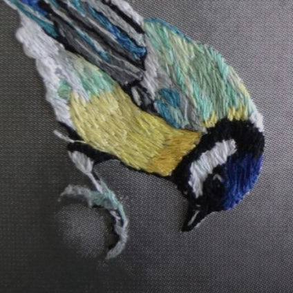 A Great Tit