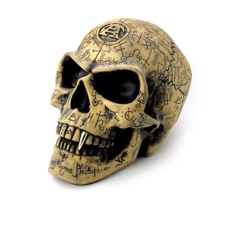 7000 Years of Wisdom Skull Figurine