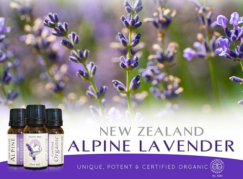Pacific Blue-Certified Organic Lavender pure essential