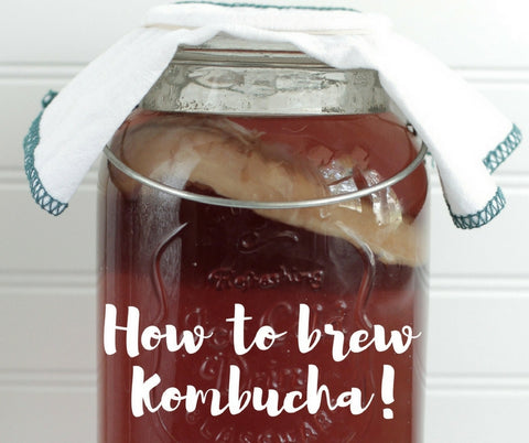 How to brew Kombucha like a pro!...and save a ton of money!
