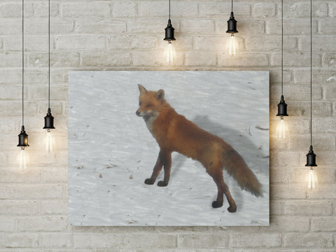 Canvas Wall Art with Frame Digital Painting - Fox in Snow