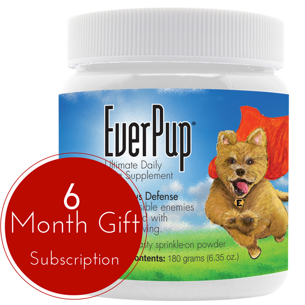 Gift of Everpup - 6 Month Subscription
