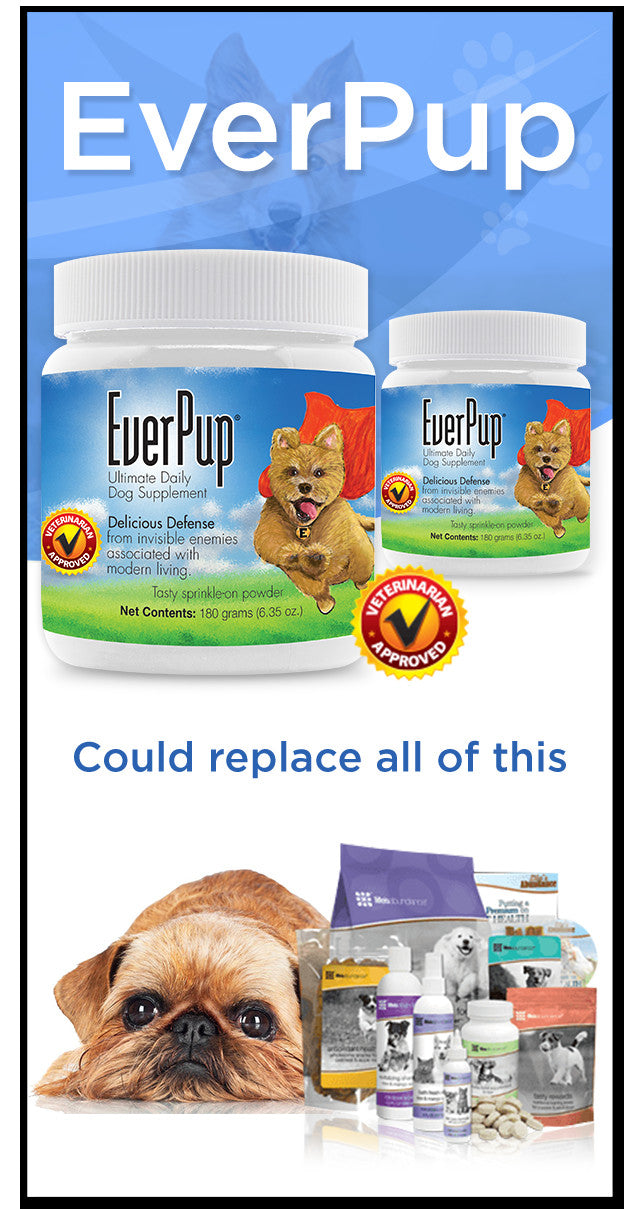 Everpup replaces your other supplements