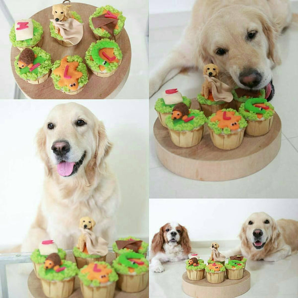 Custom Figurine Dog Cakes - The Snoring Dog Gourmet Dog Bakery and Dog Cakes - 9