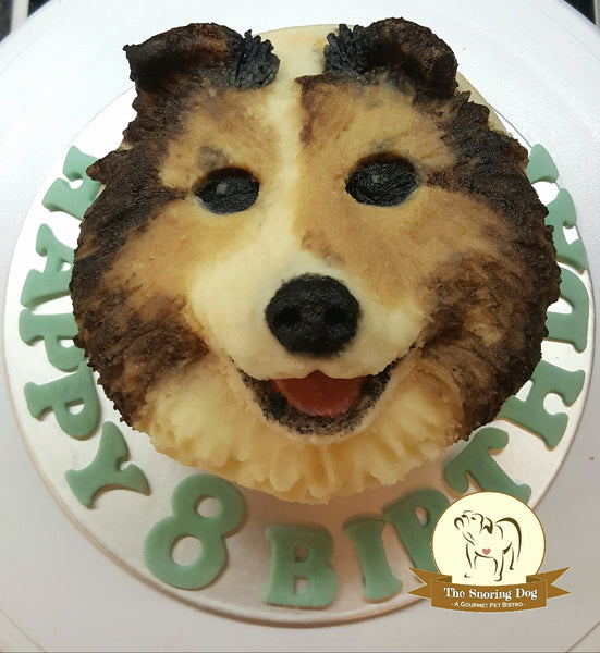 Custom Fancy Dog Cakes - The Snoring Dog Gourmet Dog Treats and Dog Cakes
