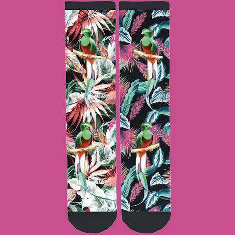 Save the Rainforest Quetzal Tropical Socks