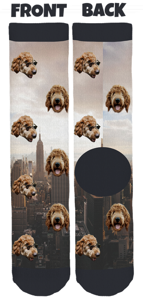 Arlo the Goldendoodle Crew Socks