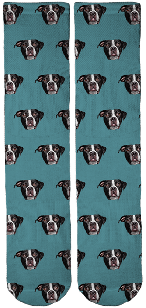 Limited Edition Bullies and Buddies Crew Socks