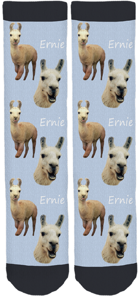 "Blackberry Creek Farm Animal Sanctuary ""Ernie"" Socks"