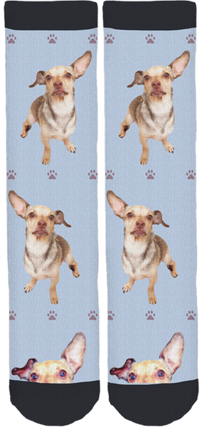 Delta Community Animal Shelter Crew Socks