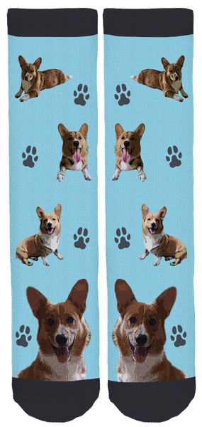 Bear The Corgi Crew Socks