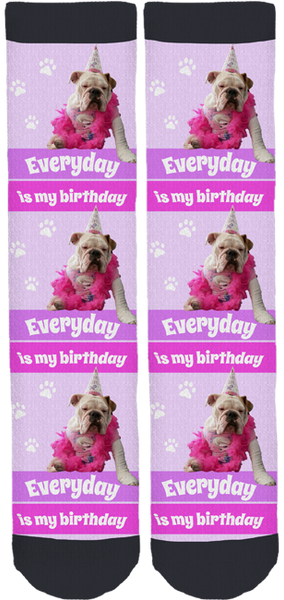 "Cookie The English Bulldog ""Birthday"" Socks"